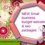 small business budget websites and SEO packages