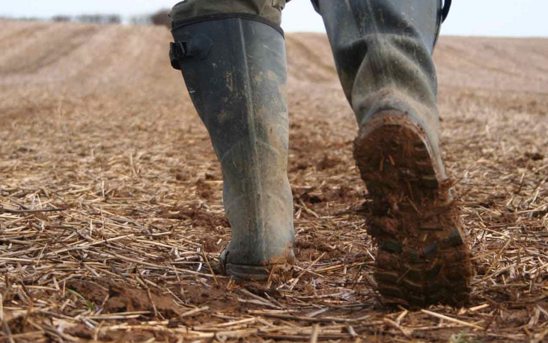 Bootbox Innovation at the Ploughing