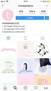 Instagram transparlyze graphic the business fairy digital marketing agency
