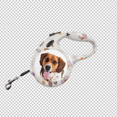 The business fairy personalised dog leads